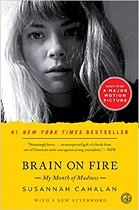 brain of fire book cover